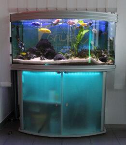 Aquarium 1 - Bauer Elektrotechnik Gilching - Ihr Spezialist für Elektrotechnik in Gilching, Starnberg, Germering, Fürstenfeldbruck und München